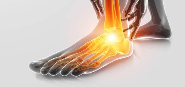 足関節の解剖を画像でやさしく解説!どんな靭帯や骨・筋肉があるの?